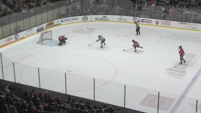 Nailers postpone game due to flooding