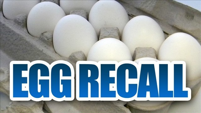 FDA : More than 200 million eggs recalled due to possible Salmonella contamination