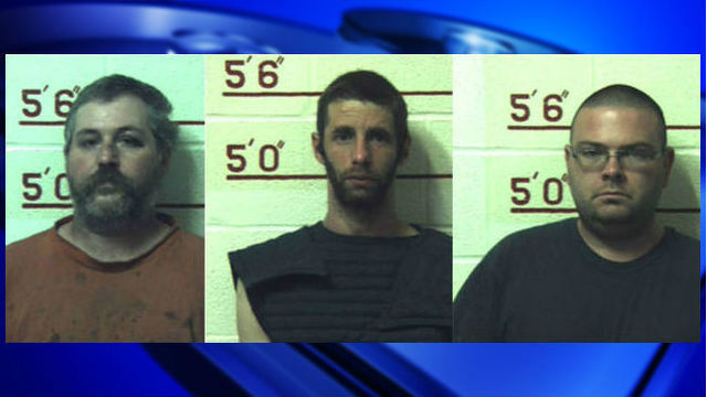 Three men charged with having sex with 12 animals